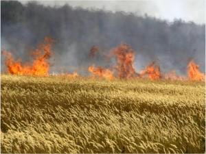russian.fire.ap